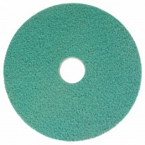 "Bright 'n Water Cleaning pad 12""groen 2sstuks"